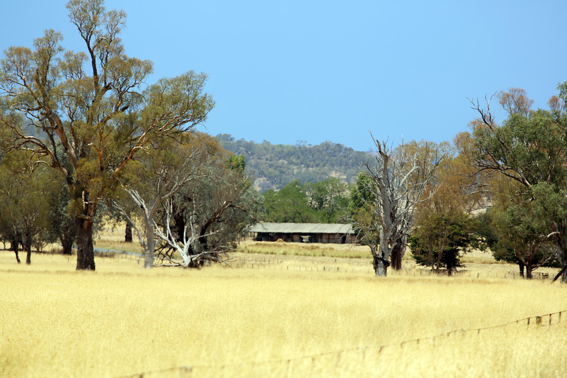 Around Our Country - Wantagong and Surrounds.