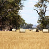 Around Our Country - Carlyle and Surrounds.
