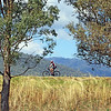 Australian landscapes and scenes - Mount Beauty.