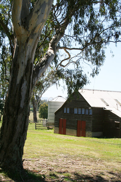 Around Our Country - Yea and Surrounds.