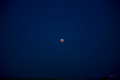 Solo Eclipse