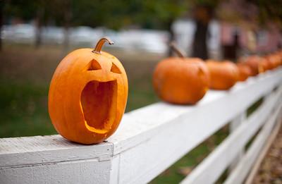 Piedmont - Annual Halloween Pumpkin Carving, Old Salem, NC.