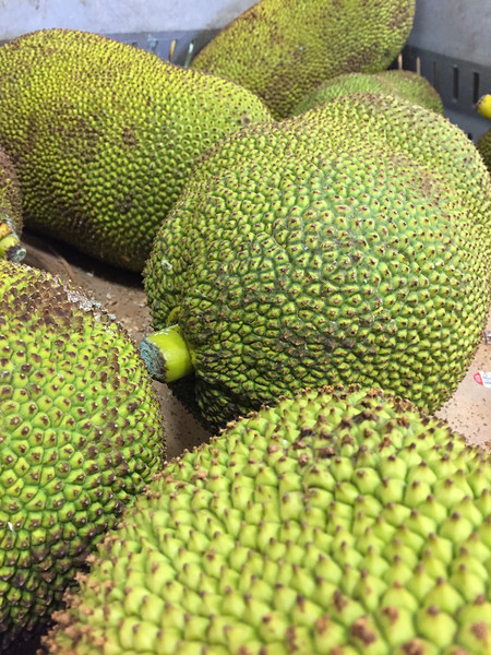 Jackfruit | Unusual and exotic fruits from around the world
