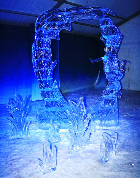 Ring Shaped Ice Sculpture