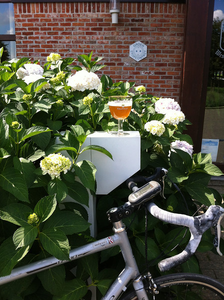 Bicycling Belgium's Best Breweries