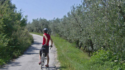 Bicycle through olive groves on small country roads