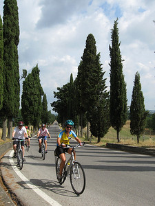 Cycling through typical cypress tree-lined roads in Tuscany