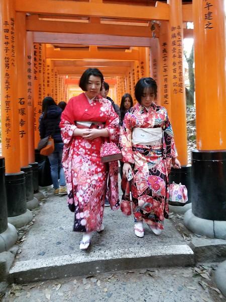 Kimono dress-up to stroll torii arcades