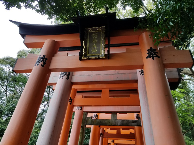 Thousands of torii in arcades up the mountain