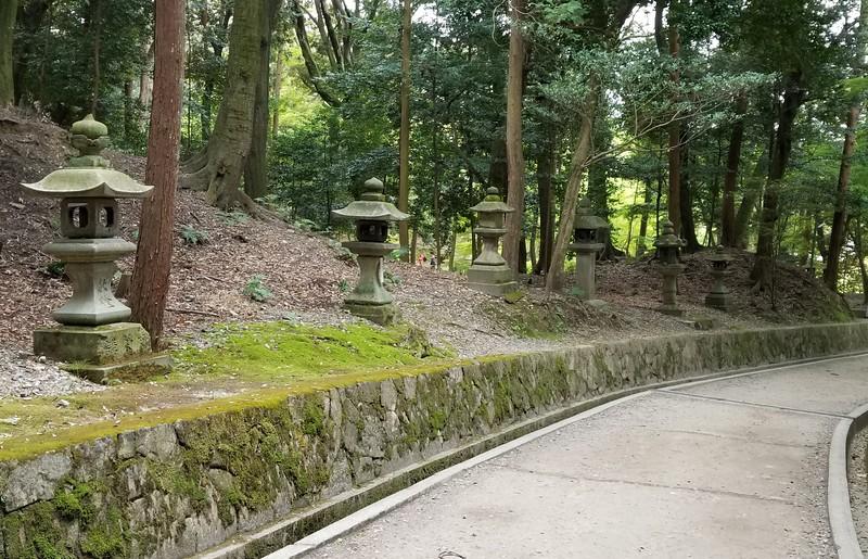 Lantern lined walkway