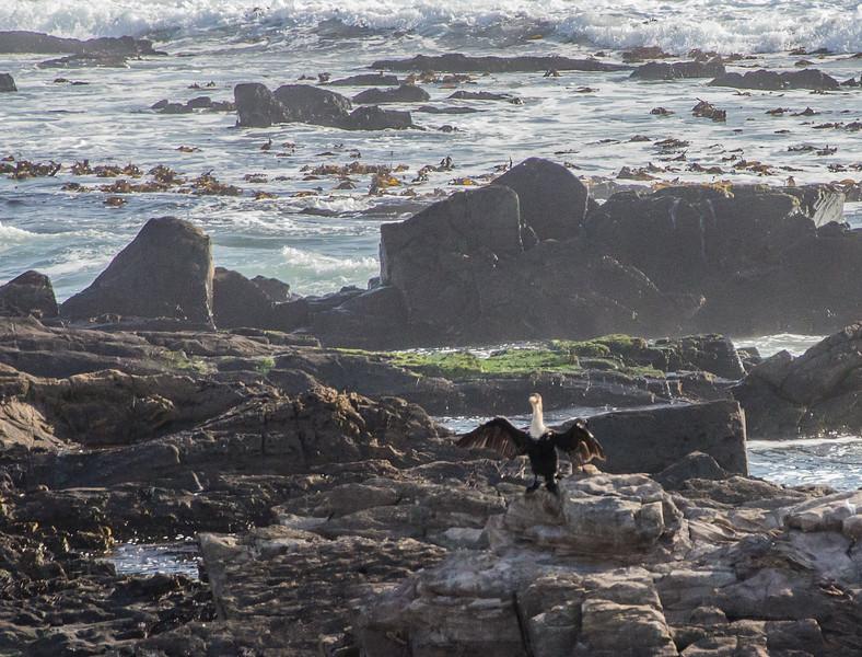 0142019-09 Capetown