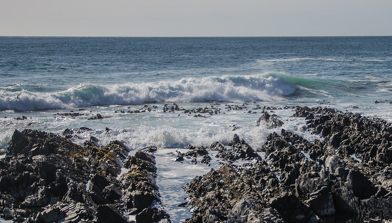 0152019-09 Capetown