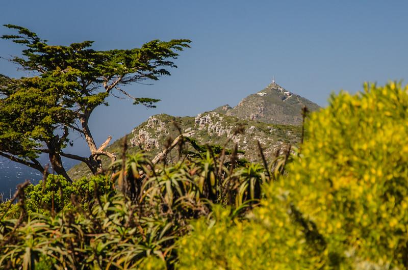 1222019-09 Capetown
