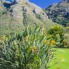 0492019-09 Capetown