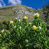 0652019-09 Capetown