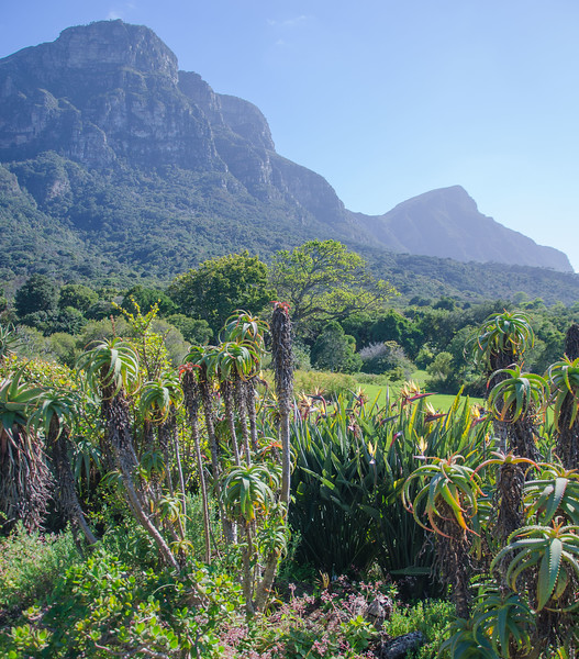0542019-09 Capetown