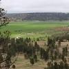 Verdant Valley