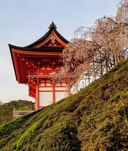 Kiyomizu-dera Temple gateway