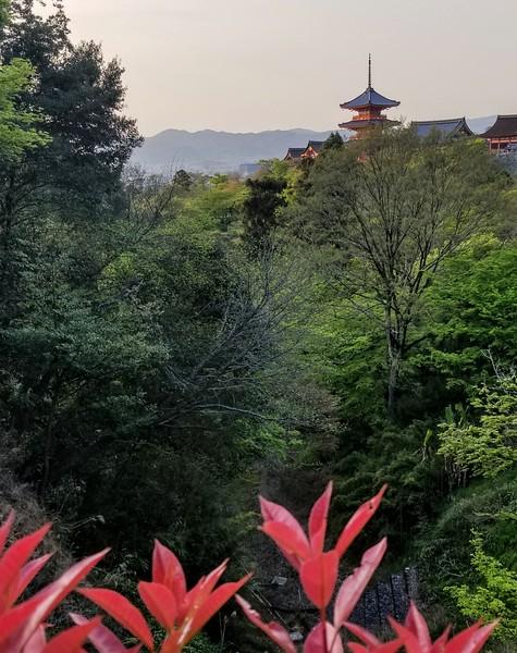Kiyomizu-dera Temple view over Kyoto