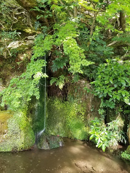 Delicate waterfalls