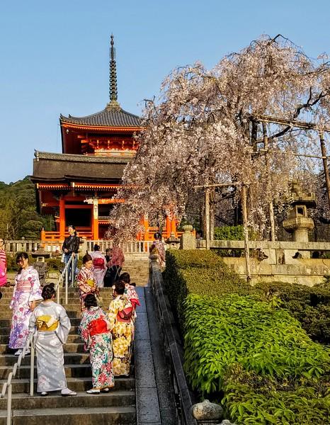 Steps to Kiyomizu-dera Temple grounds