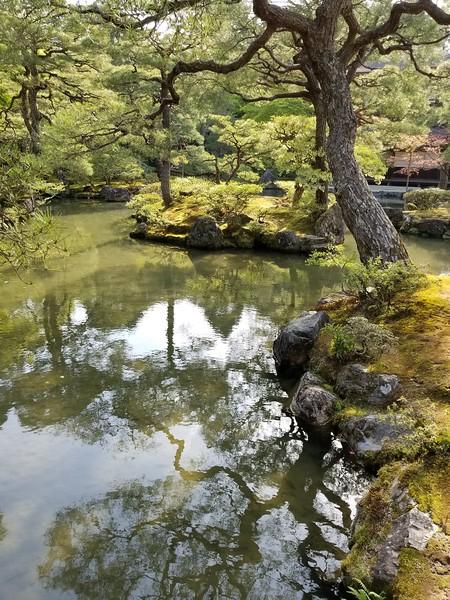 Myoshin-ji Temple grounds