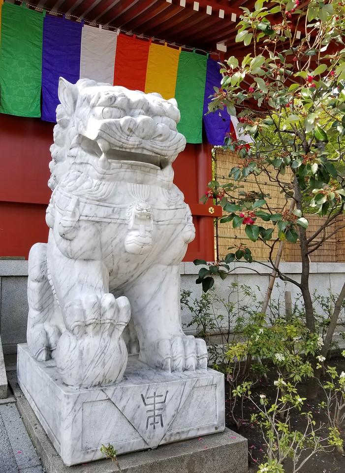 Senso-ji Lion