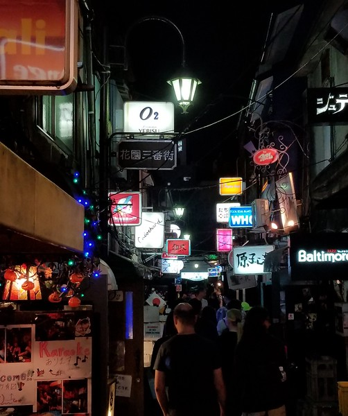 "Golden Gai - scruffy alley of bars ""etc."""