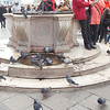 Venice Piazza di San Marco 14.1