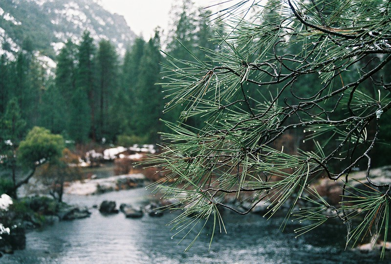 Our Water Resources - The Tuolumne River