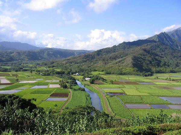Kauai -Hanalei Valley