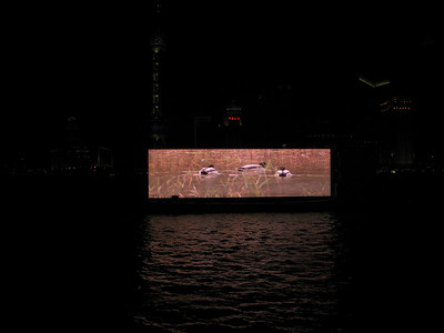 Those floating movie screen barge played nature movies and ads