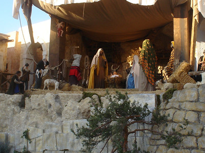 The life size Nativity scene in St Peter's square