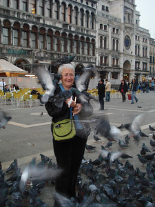 Mom being attacked by pigeons