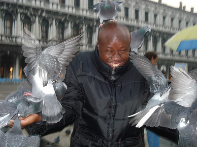 Julius takes away the food to save mom from the pigeons