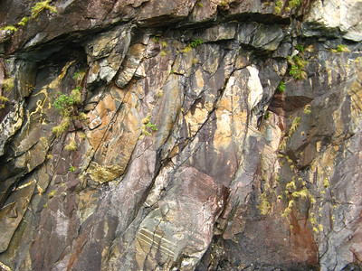 The cliffs are full of minerals, causing discoloration