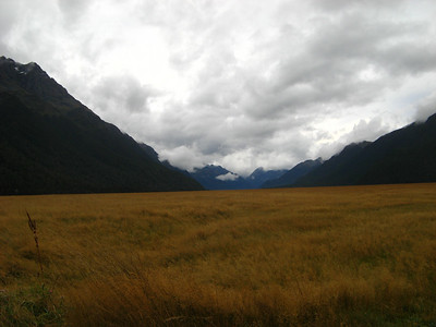 On the way from Te Anau to Milford sound