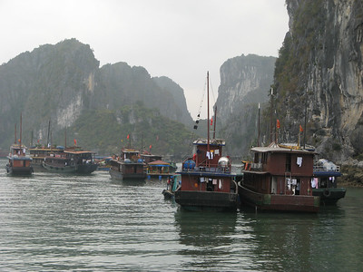 The many tourist boats in the bay