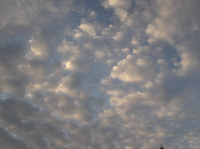 Morning Clouds 4