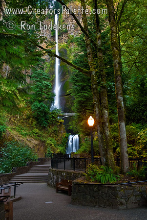 "Multnomah Falls early morning.  Columbia River Gorge, Oregon.  These falls are as beautiful as ever but what kept drawing me back to this particular photo was the light stand in this early morning hour.  My imagination kept jumping to the light stand in Narnia - maybe after Aslan defeated the White Witch.  Now I need to take the same photo some snowy morning to capture the scene when the White Witch was still in control (you'll have to read C.S. Lewis' ""Lion, Witch and the Wardrobe"" to understand).  Too bad it is 950 miles away from me..."