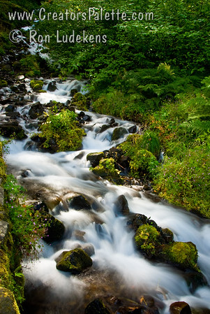 Wahkeena Falls in the Columbia River Gorge, Oregon