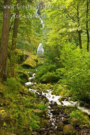 Wahkeena Falls in the Columbia River Gorge, Oregon