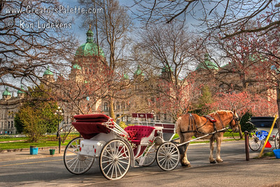 Horse and carriage rides in front of British Columbia's Legislative Buildings in Victoria near the Inner Harbor