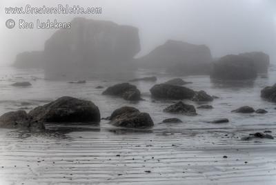 Foggy Coastline below Trinadad, California