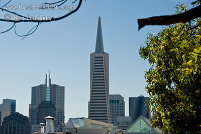 Transamerica Pyramid as seen from Telegraph Hill