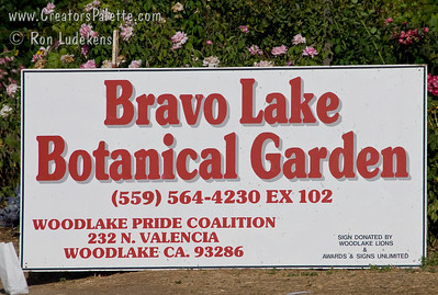 Photos from Bravo Lake Botanical Gardens - Woodlake, California 6-30-07