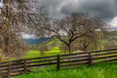 Pasture Lands - Yokohl Valley, CA
