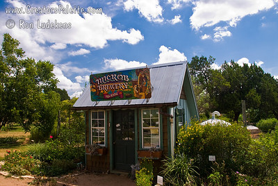 Photo taken at the Natural Gardener, Austin, TX