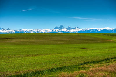 Farm land with Grand Tetons in the background.
