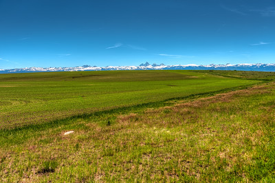 Farmland with the Grand Tetons in the background.